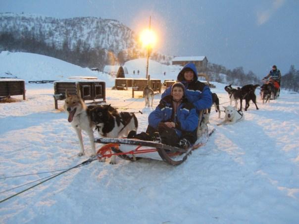 Kirkenes (N69.46) - Husky sledging - 2/1/2015